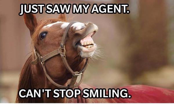 "A horse with his head turned, smiles for the camera with the caption ""Just saw my agent, can't stop smiling"""