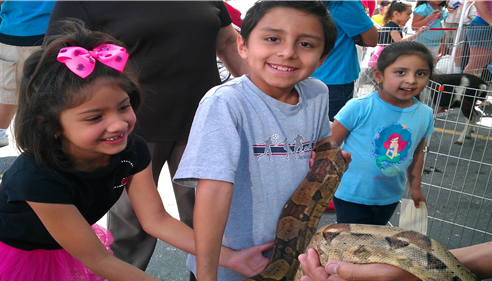 Downey YMCA Family Day Petting Zoo