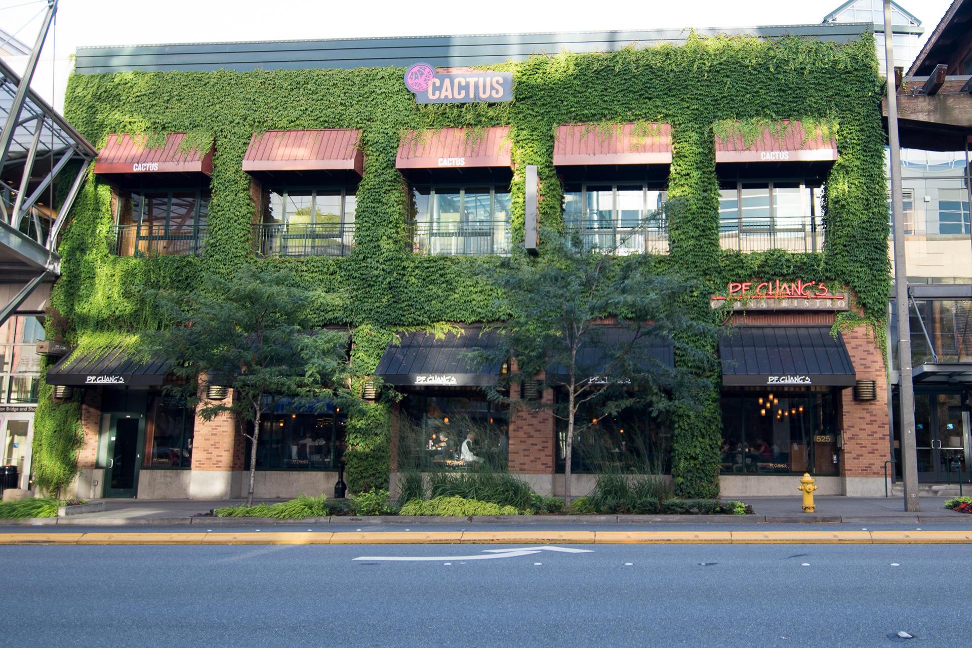P F Chang S In 525 Bellevue Square Bellevue Wa Asian