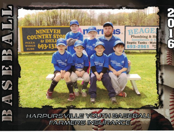 Proud sponsor of The Harpursville Youth Baseball League.
