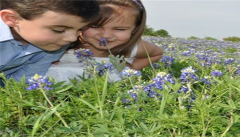 Two children leaning over a field of flowers, smelling them.