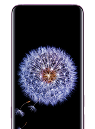 The front of the Samsung Galaxy S9| S9+ highlighting the phone's screen