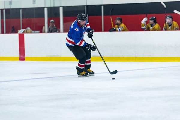 agent playing ice hockey