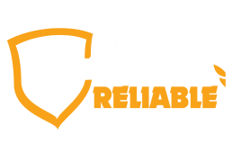 One Stop Shop For All Of Your Car Buying Needs