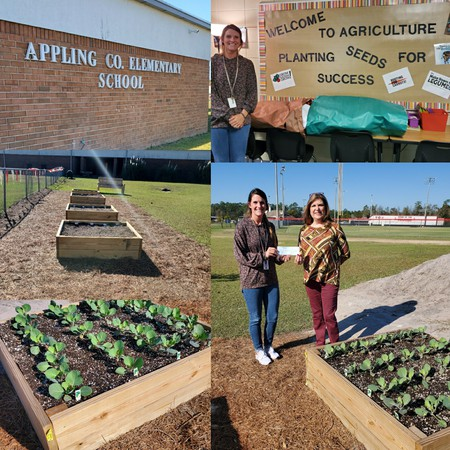 Collage of the schools agriculture class and building and the farmers agent with an administrator.