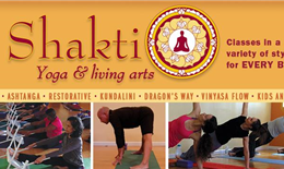 Shakti Yoga and living arts