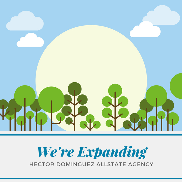Hector Dominguez - We're Coming to Brownsville