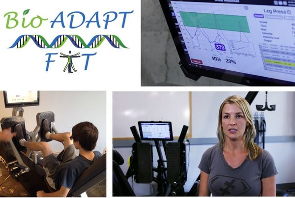 Bio Adapt Fit - Best resistive strength and endurance training hot spot in Colorado Springs