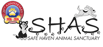Save Haven Animal Sanctuary