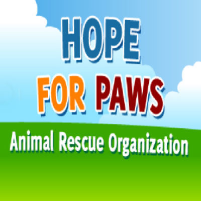 Support our Rescue Missions