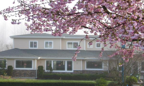 Fall City office in Spring with the Cherry blossoms in full bloom.