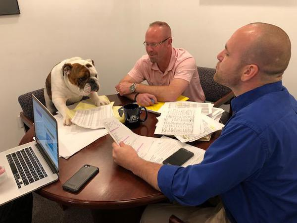 Two men sitting at desk with bulldog.