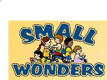 Small Wonders Childcare Center - Hillsboro & Desoto Locations