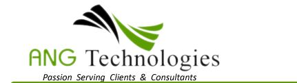 Meet ANG Technologies a premiere consulting business.