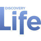 Discovery Life Channel (DLIF) Stockton
