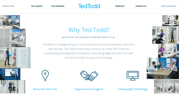Ted A. Todd - Change the Way You Feel About Insurance