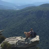 Mountain Life Asheville-Insurance Agent