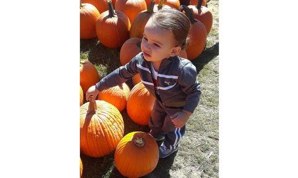 young male child at a pumpkin patch