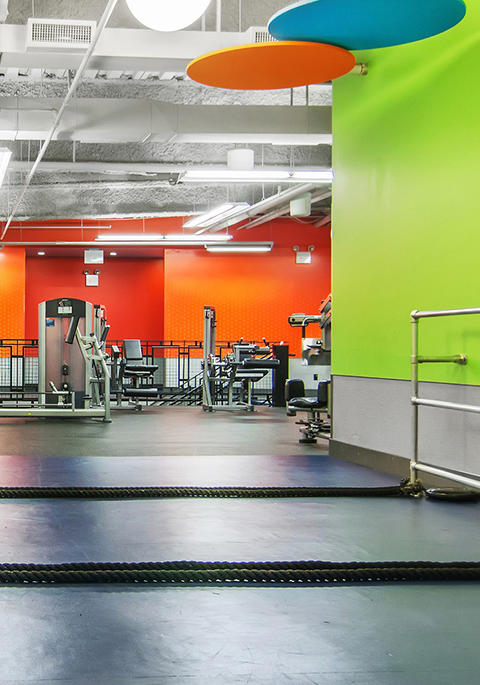 All Blink Fitness Gyms In Ca Cardio Equipment Strength Equipment Gym Equipment Gym Near Me Fitness Center Personal Trainer Gym Membership Fitness Gym