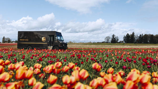 UPS truck driving through field of flowers