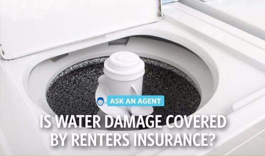 Michael Short - Renters and Water Damage