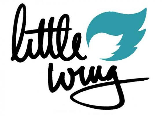 Image of Little Wing Sessions - Sign Up Today!!  Starts Oct 10th + 11th