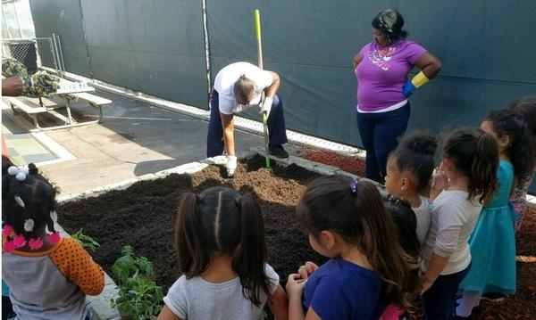 Teachers and Students planting the garden.