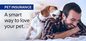 Cover up to 90% on veterinary bills with Pet Insurance from Pets Best.
