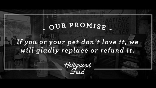 Image of Hollywood Feed Promise
