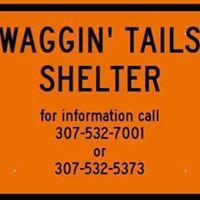 Waggin' Tails Shelter