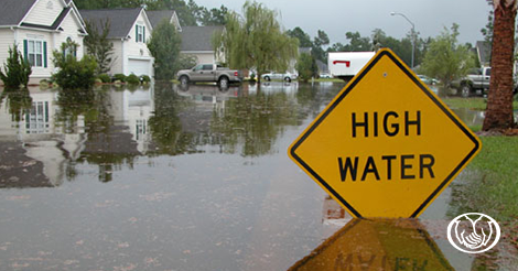 Adli Khatatbeh - Flood Insurance: Do You Really Need It?