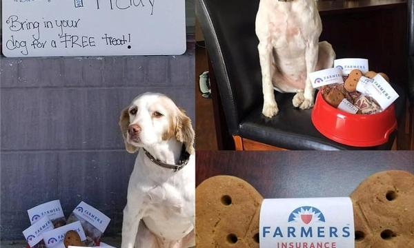 Two images of a dog sitting next to a bowl of dog treats, and an image of the dog treat wrapped in paper displaying the Farmers logo