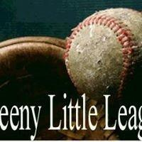 Proud Supporter, Board Member, and Coach at Sweeny Little League