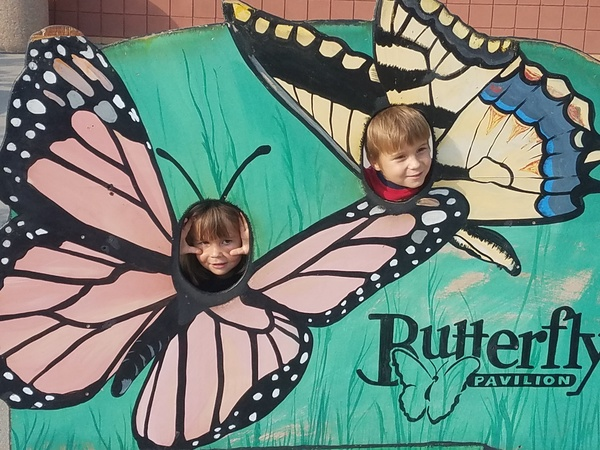 Enjoying a Saturday at the Butterfly Pavillion!