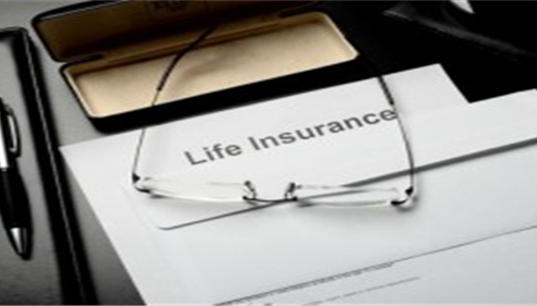 Life insurance* for business