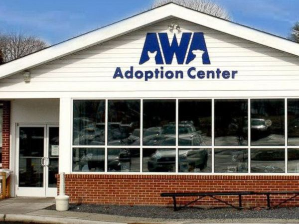 AWA Pet Adoption Center