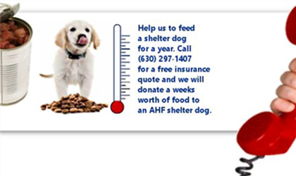 Help us feed an AHF rescue dog for a year!