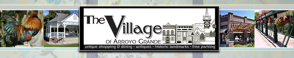 Arroyo Grande Village Improvement Association (AGVIA) Board Member.