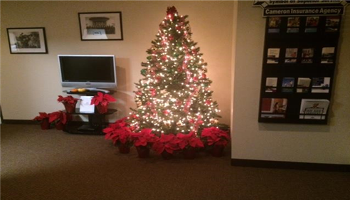We are celebrating the holiday season at Cameron Insurance. Merry Christmas '15