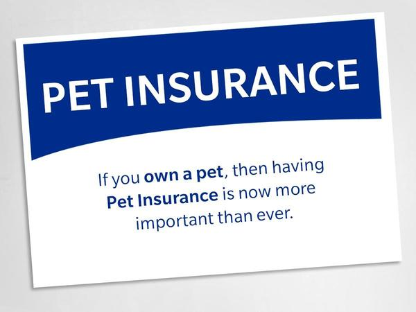 Did you know that Farmers® sells Pet Insurance?