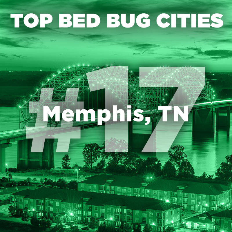 Memphis - 2019 Top Bed Bug Cities