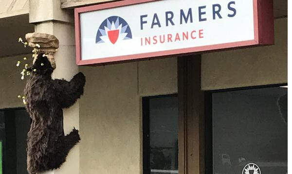 Farmers Insurance sign and decorative bear climbing the exterior