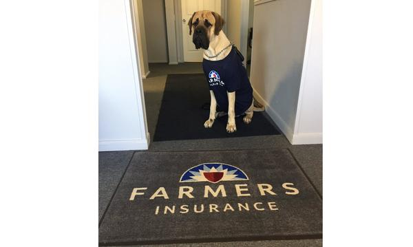 A dog wearing a Farmers t-shirt sits at the entrance of the agency