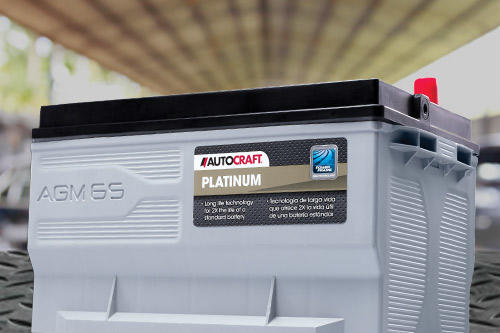 Autocraft Platinum AGM Battery