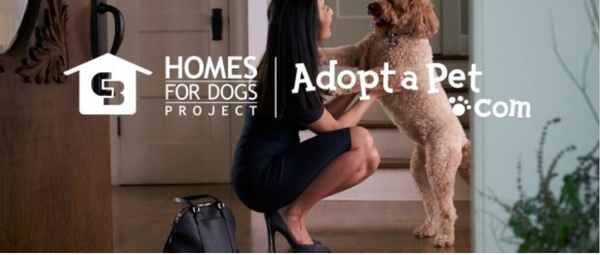 Home for Dog's Project by Coldwell Banker Legacy of New Mexico.