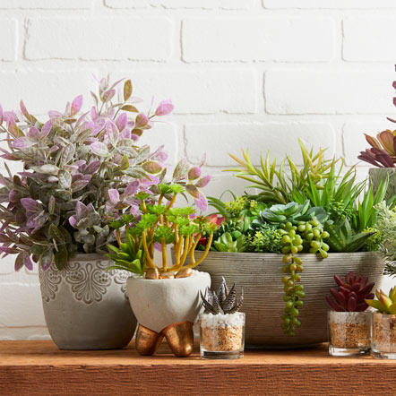 Spring Floral & Foliage. Put a finishing touch on your look with our great selection of floral arrangements, wreaths and more. You'll love the savings from festive bouquets to sophisticated and trendy succulents for your home office or any room in the house.
