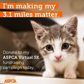 Tracy McKenica Besenyodi - Support the ASPCA ®