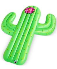 Image of Big Mouth Cactus Pool Float