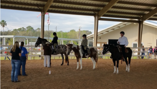Susan Kempfer-Weeks - Heavenly Hooves & Horses receives Allstate Support
