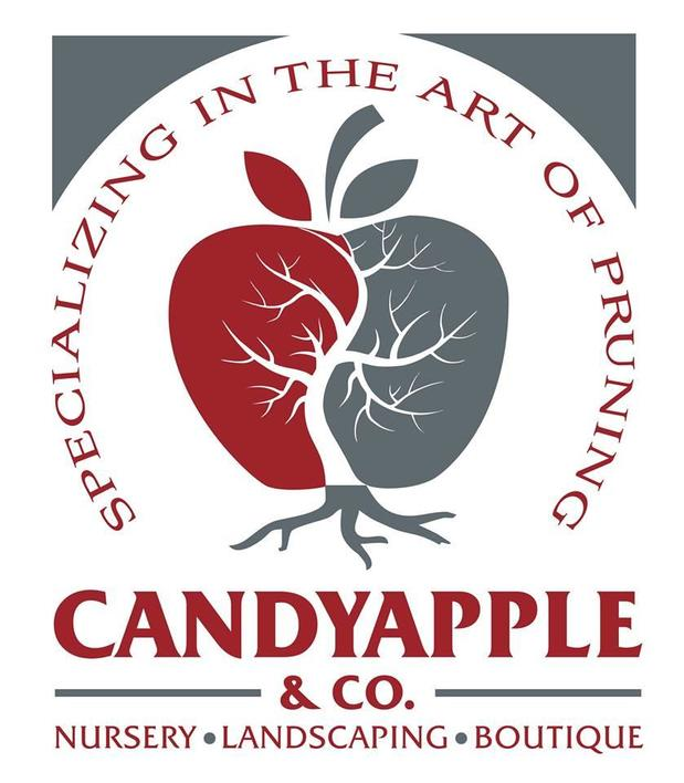 Candyapple & Co. Boutique